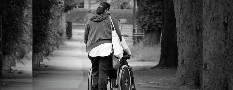 El Seguro De Dependencia Como Contribución Social