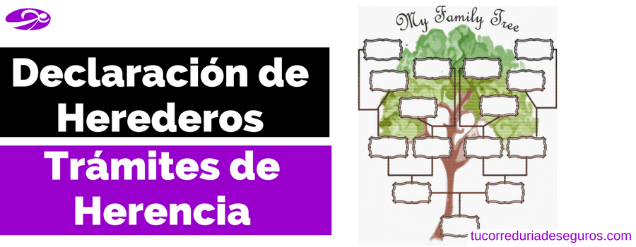 Declaracion De Herederos