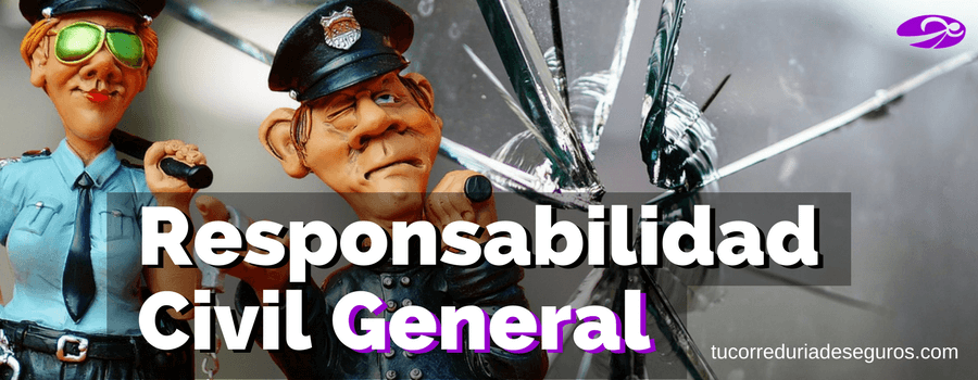 Seguro De Responsabilidad Civil General
