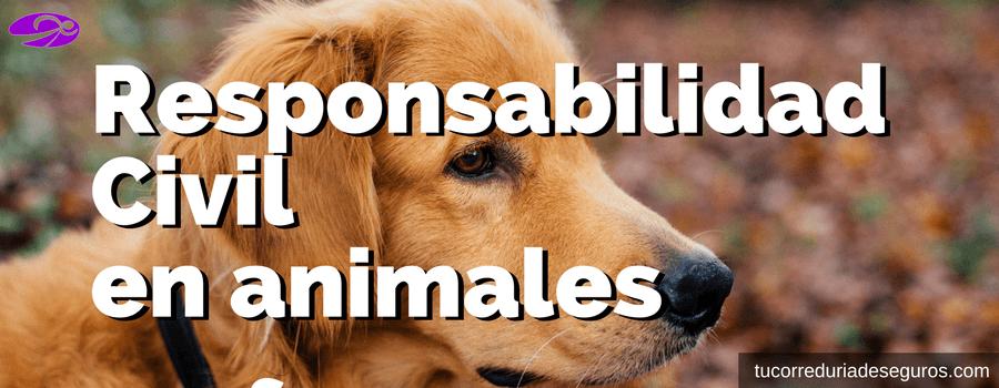 Responsabilidad Civil Mascotas Perro Animales