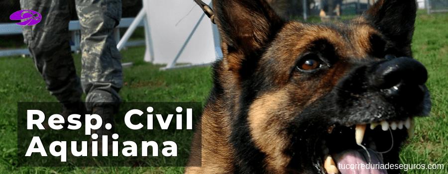 responsabilidad civil aquiliana