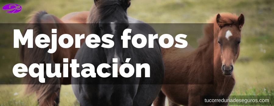 Mejores Foros Equitación