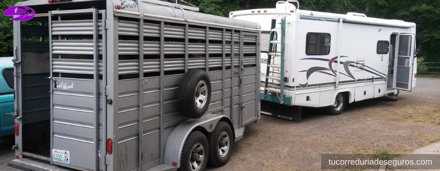 Vehiculos Para El Transporte De Caballos