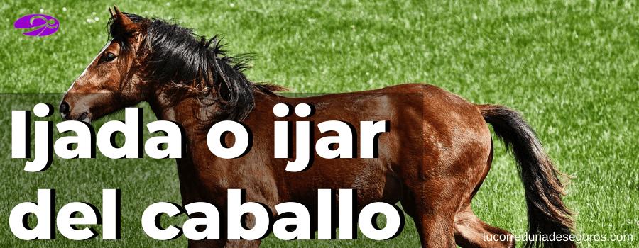 ¿Qué es ijada o ijar del caballo?