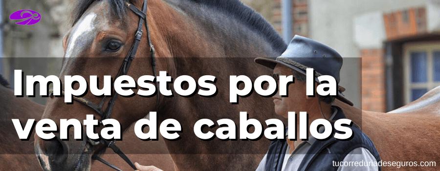 Impuestos por la venta de caballos