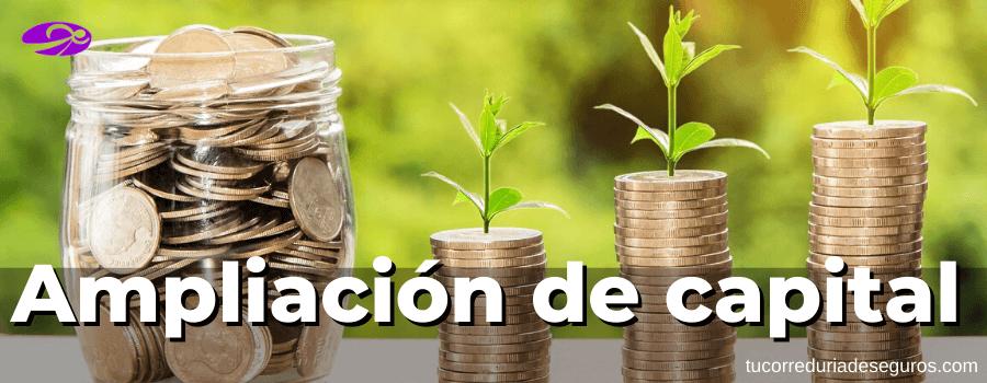Ampliación De Capital Para Compensar Pérdidas