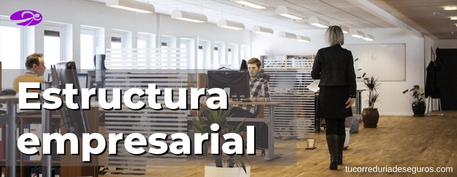 Estructura Empresarial Ejemplo