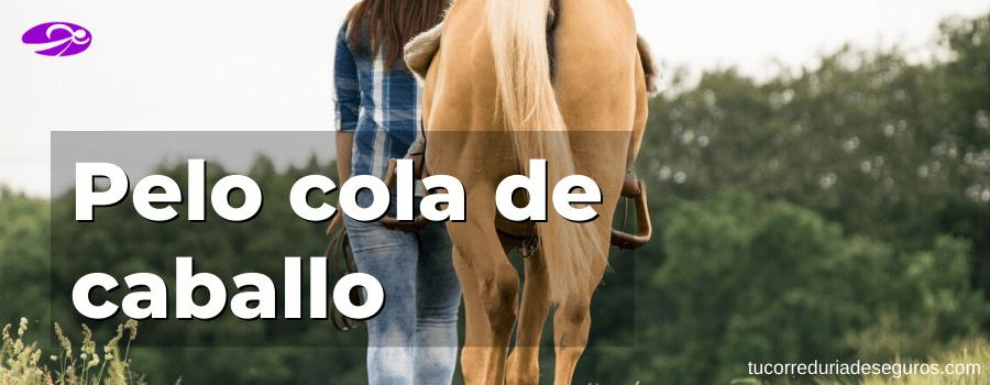 usos pelo cola caballo