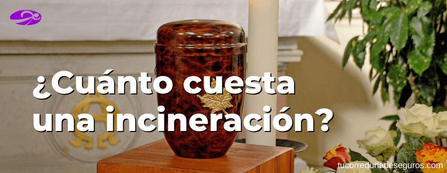 Cuanto Cuesta Una Incineracion Precios De Los Servicios Funerarios Con Cremacion